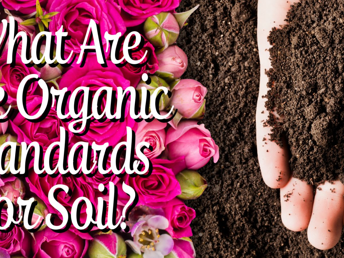 What Are The Organic Standards For Soil?